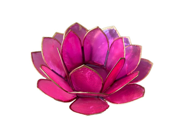 Lotus sfeerlicht rose